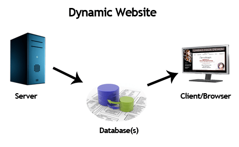 What is the Difference Between Static and Dynamic Website?